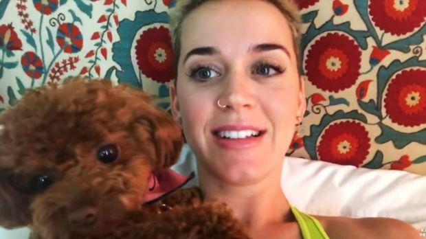 Katy Perry è in diretta per tutto il weekend su YouTube: eccola mentre dorme, si lava, mangia e promuove il nuovo album (VIDEO)