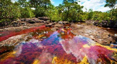 Il fiume Caño Cristales, o fiume arcobaleno