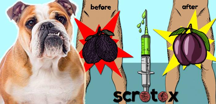 scrotox-iniezione-di-botox-nelle-palle-957900