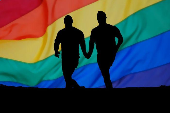 -LGBT bandiera
